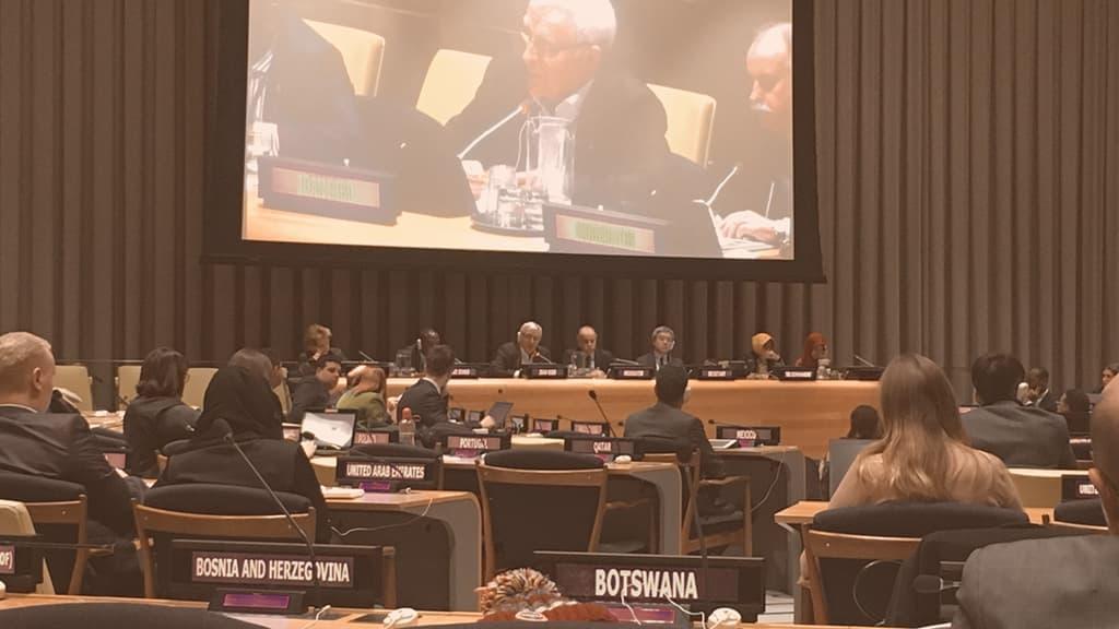 El CEMAS ante la Asamblea General de las Naciones Unidas febrero 2019